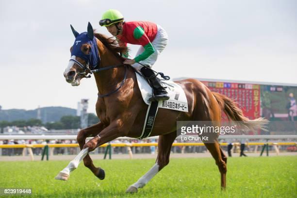 Jockey Daichi Shibata riding Meiner Sphene during the Tokyo Yushun at Tokyo Racecourse on May 28 2017 in Tokyo Japan Tokyo Yushun Japanese Derby is...