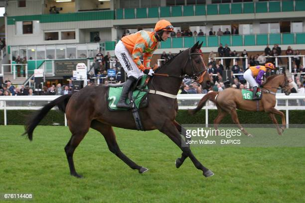 Jockey Dean Coleman on Rare Article during the Freebetscouk Betting Mares's Handicap Hurdle