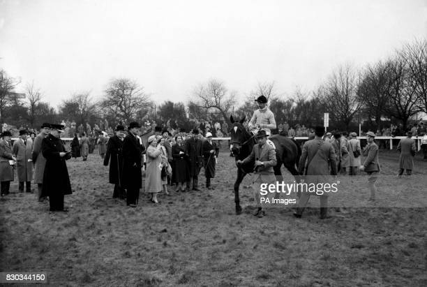 Jockey Dick Francis on the Queen Mother's horse Devon Loch in the parade ring before the Grand National Handicap Steeplechase at Aintree Liverpool