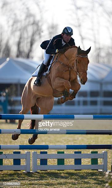 Jockey during a Show Jumping. Color Image