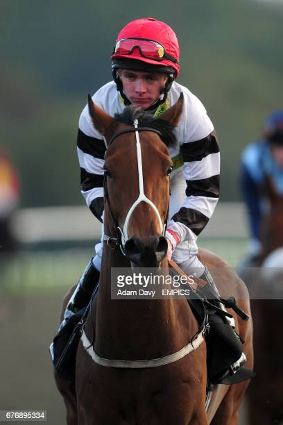 Jockey Eddie Creighton on Wise Up prior to The L M Body Repairs Legendary Classified Claiming Stakes