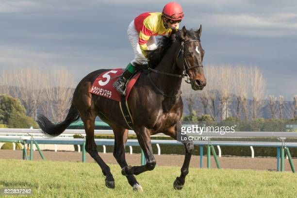 Jockey Futoshi Komaki riding Toshin Monstera during Race 11 Kyoto Kinen at Kyoto Racecourse on February 14 2016 in Kyoto Japan