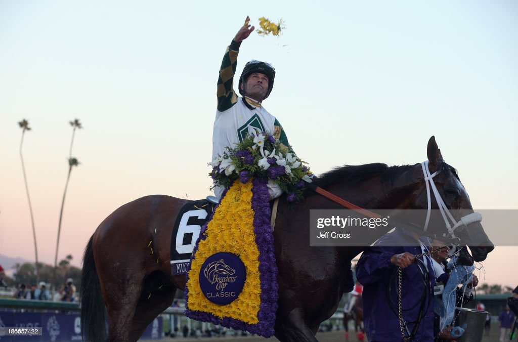 Jockey <a gi-track='captionPersonalityLinkClicked' href=/galleries/search?phrase=Gary+Stevens+-+Jockey&family=editorial&specificpeople=15617910 ng-click='$event.stopPropagation()'>Gary Stevens</a> celebrates atop Mucho Macho Man after winning the Classic during the 2013 Breeders' Cup World Championships at Santa Anita Park on November 2, 2013 in Arcadia, California.