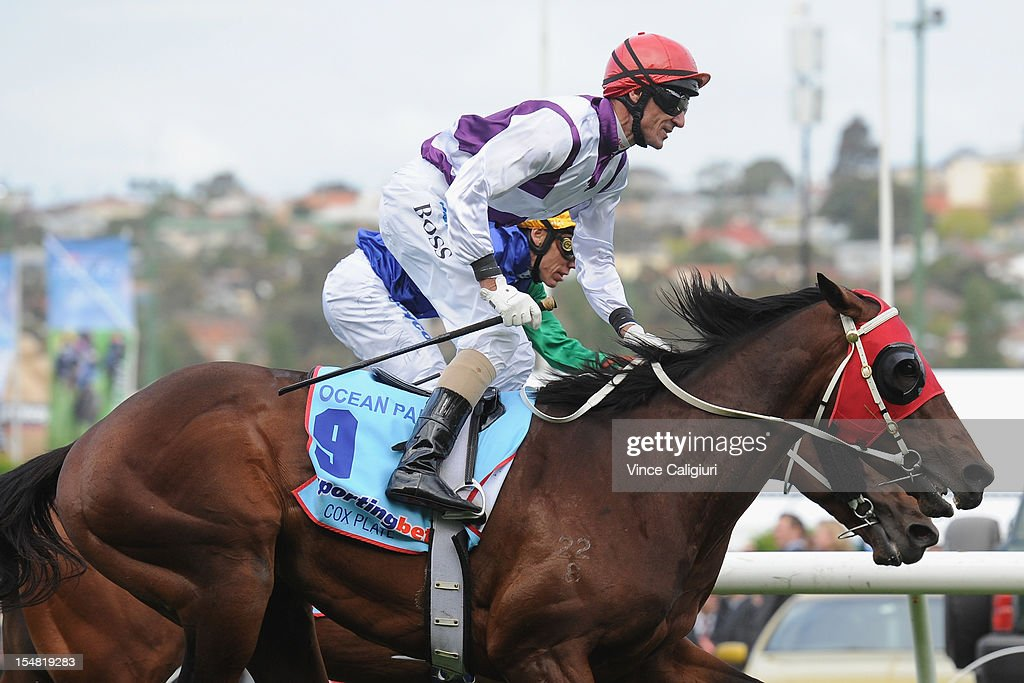 Jockey Glen Boss riding Ocean Park defeats Chris Munce riding All Too Hard in the Sportingbet Cox Plate during Cox Plate Day at Moonee Valley Racecourse on October 27, 2012 in Melbourne, Australia.