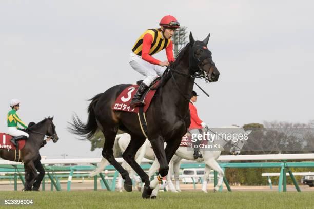 Jockey Hironobu Tanabe riding Logotype during the Race 11 Nakayama Kinen at Nakayama Racecourse on February 28 2016 in Funabashi Chiba Japan