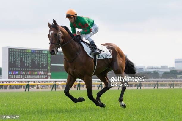Jockey Hiroyuki Uchida riding Jo Strictly during the Tokyo Yushun at Tokyo Racecourse on May 28 2017 in Tokyo Japan Tokyo Yushun Japanese Derby is...