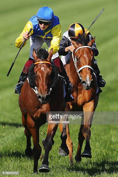 Jockey Hugh Bowman riding Le Romain wins race 8 The Cantala Stakes on Derby Day at Flemington Racecourse on October 29 2016 in Melbourne Australia