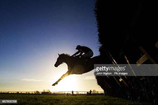 Jockey Ian Popham on Westerly Breeze during the 32RedPokercom Maiden Hurdle