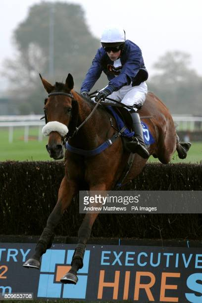Jockey James Davies on Some Secret during the Ricoh Arena Home Of The Executive Hire Show Handicap Chase