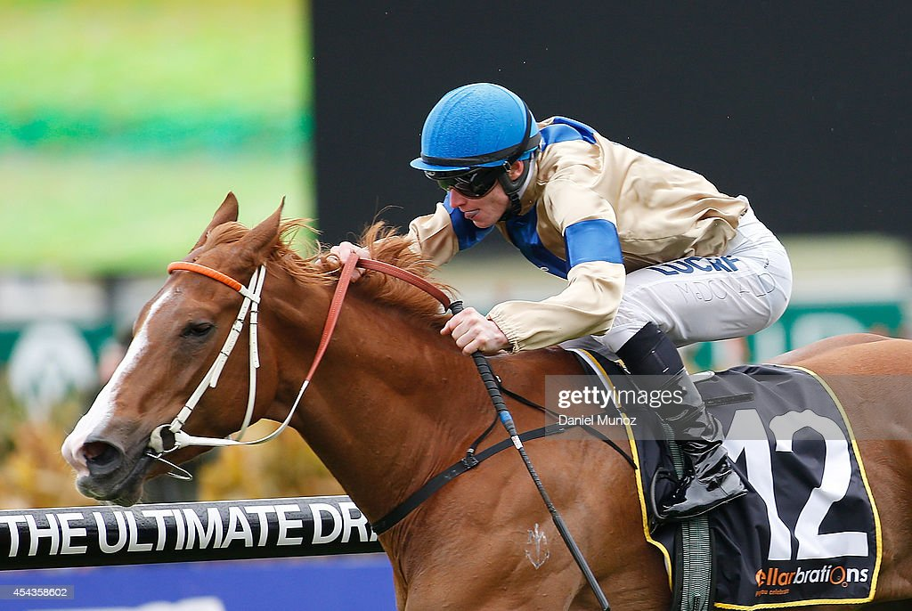 Jockey James McDonald rides Maroon Bay to win Race 4 'Cellarbrations Handicap' during Sydney Racing at Rosehill Gardens on August 30, 2014 in Sydney, Australia.