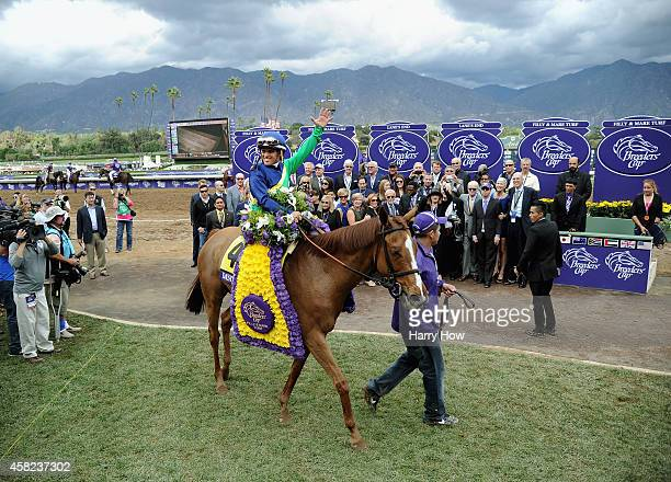 Jockey Javier Castellano celebrates atop Dayatthespa in the winning circle after winning the 2014 Breeders' Cup Filly and Mare Turf at Santa Anita...
