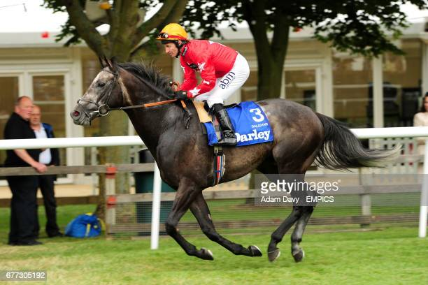 Jockey Jimmy Fortune on Dalghar prior to the Darley July Cup