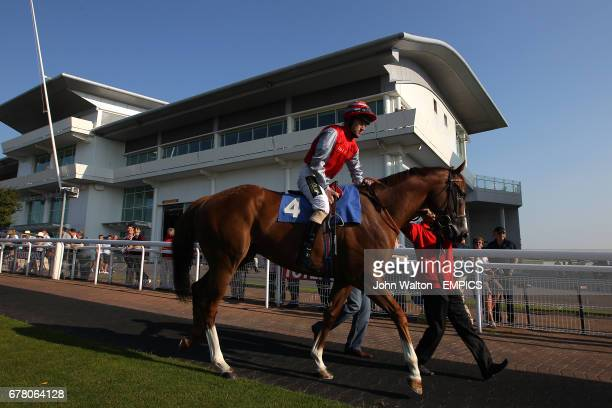Jockey Joe Fanning on Sandfrankskipsgo in the parade ring prior to the Download Epsom's Android Or iPhone App Now Handicap