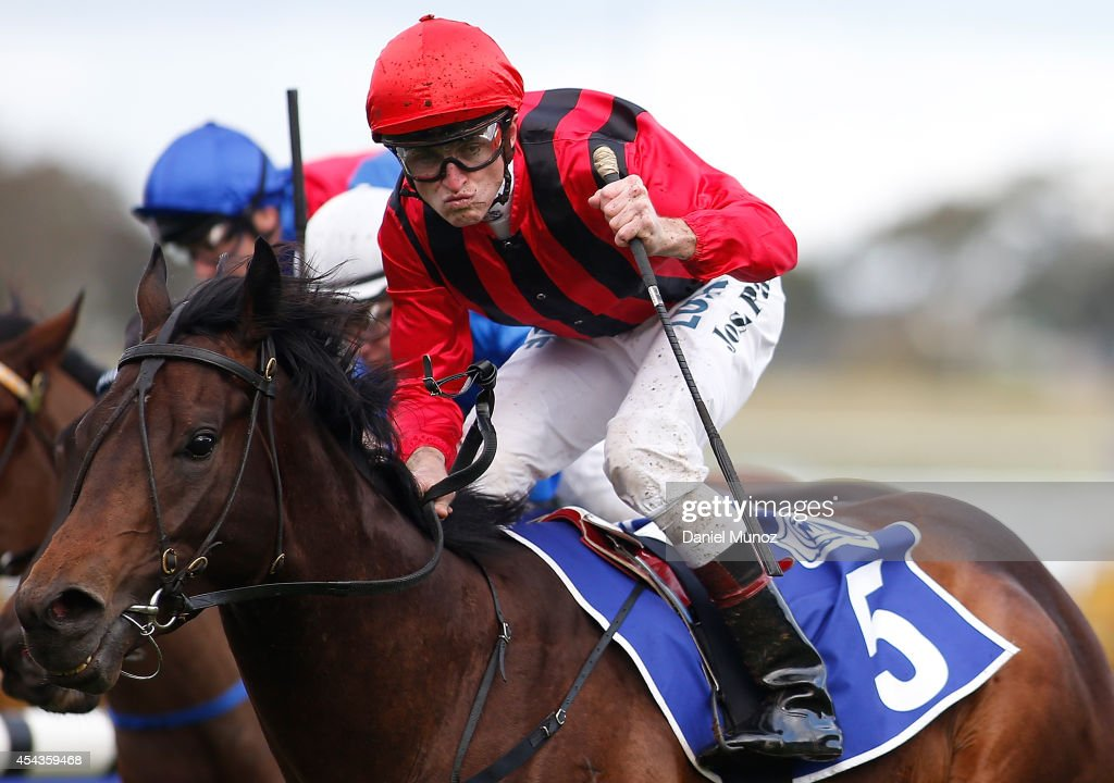 Jockey Joshua Parr riding Hallowed Crown reacts after winning Race 6 'MTA NSW Run to the Rose' during Sydney Racing at Rosehill Gardens on August 30, 2014 in Sydney, Australia.