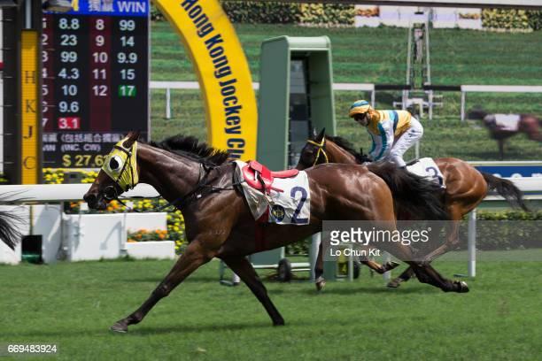 Jockey Karis Teetan falls off during Race 4 Ma Kong Shan Handicap at Sha Tin racecourse on April 17 2017 in Hong Kong Hong Kong