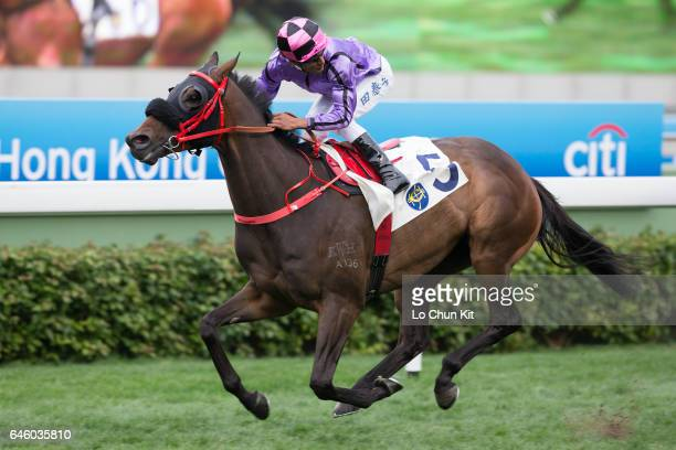Jockey Karis Teetan riding What Else But You wins Race 8 Citi Personal Loan Services Handicap at Sha Tin racecourse on February 26 2017 in Hong Kong...