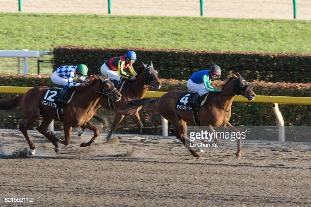 Jockey Keita Tosaki riding Matchless Hero wins the Race 12 Oshima Tokubetsu at Tokyo Racecourse on February 21 2016 in Tokyo Japan