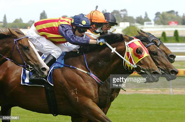 Jockey Kelvin Sanderson races to win on Super Elegant red yellow blinkers at the Caulfield Races 8 January 2005 THE AGE Picture by VINCE CALIGIURI