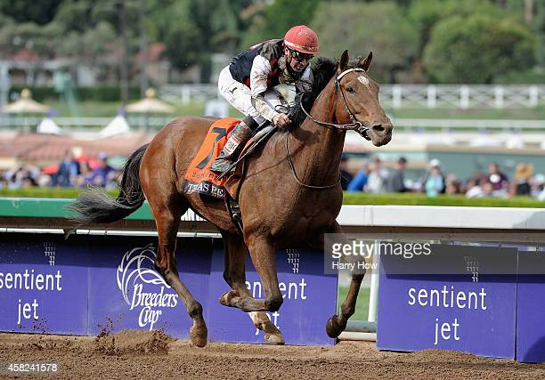 Jockey Kent Desormeaux rides Texas Red en route to winning the 2014 Sentient Jet Breeders' Cup Juvenile at Santa Anita Park on November 1 2014 in...