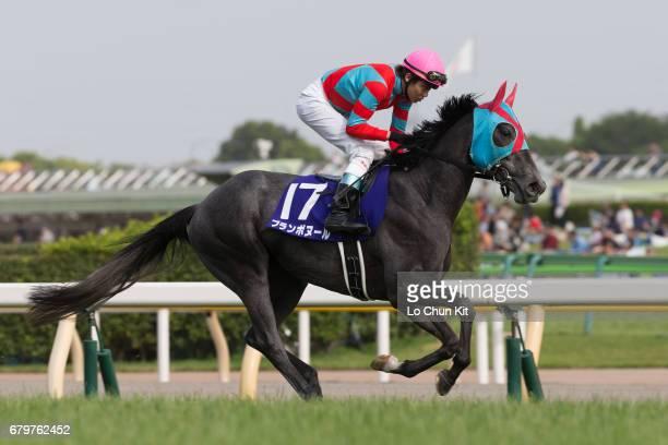 Jockey Kosei Miura riding Blanc Bonheur during NHK Mile Cup at Tokyo Racecourse on May 8 2016 in Tokyo Japan