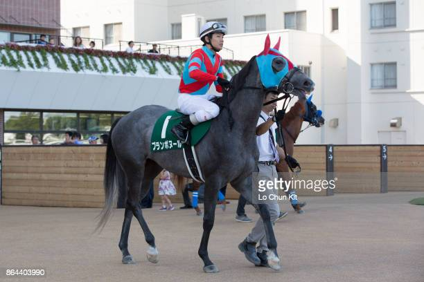 Jockey Kosei Miura riding Blanc Bonheur during the Race 11 Keeneland Cup at Sapporo Racecourse on August 27 2017 in Sapporo Hokkaido Japan