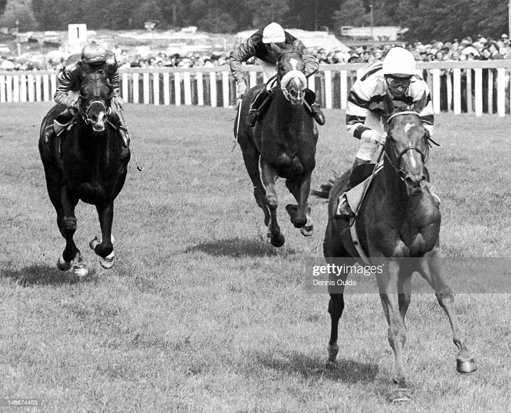 Jockey <a gi-track='captionPersonalityLinkClicked' href=/galleries/search?phrase=Lester+Piggott&family=editorial&specificpeople=208072 ng-click='$event.stopPropagation()'>Lester Piggott</a> wins the Gold Cup at Ascot, on Sagaro, with Mistigri (R. Taylor up) in second place and Le Bavard (A. Gilbert up) in third, 19th June 1975.