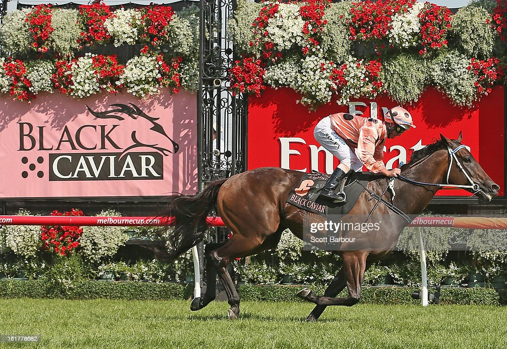 Jockey Luke Nolen riding Black Caviar wins race 7 the Black Caviar Lightning Stakes during Lightning Stakes Day at Flemington Racecourse on February 16, 2013 in Melbourne, Australia.