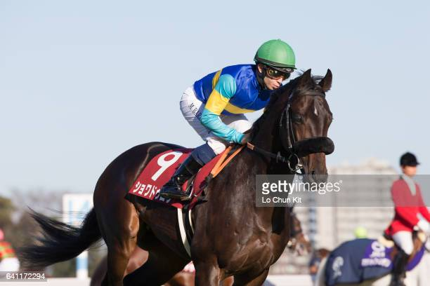 Jockey Mickael Barzalona riding Choix Droit during the Race 9 Hopeful Stakes at Nakayama Racecourse on December 25 2016 in Funabashi Chiba Japan