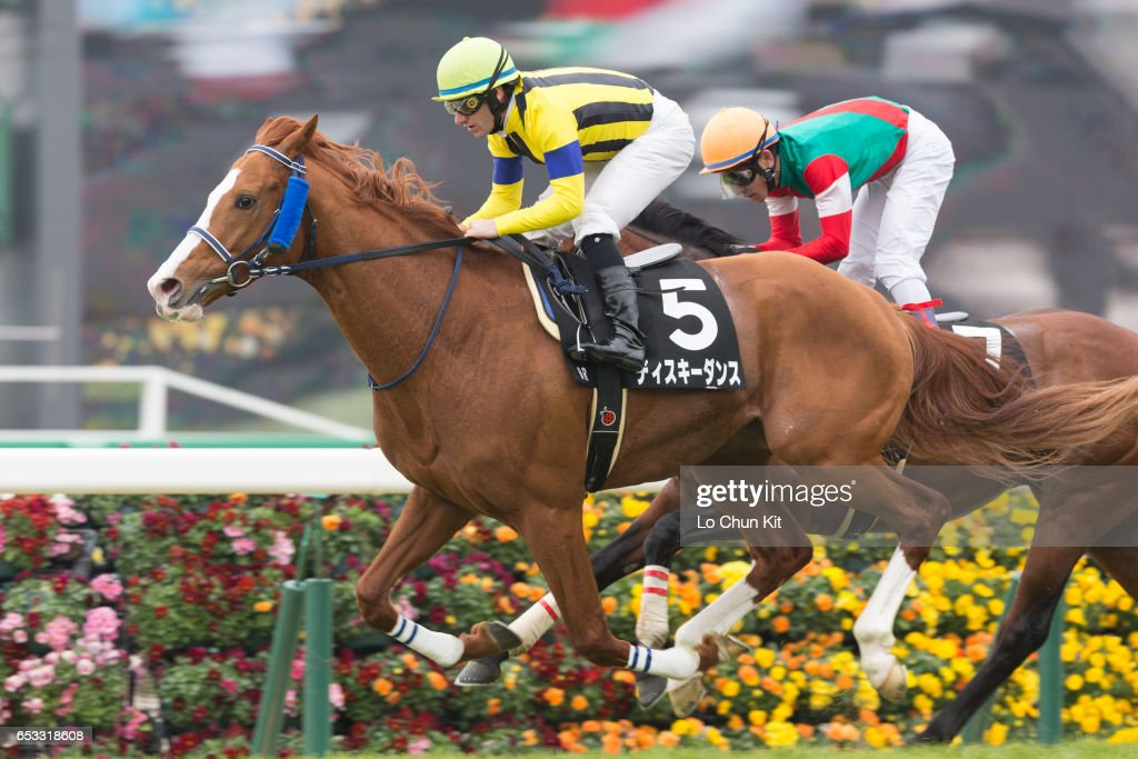 Jockey Mirco Demuro riding Diski Dance wins the Race 9 at Nakayama Racecourse on March 6, 2016 in Funabashi, Chiba, Japan.