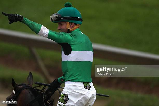 Jockey of Exaggerator Kent Desormeaux celebrates after winning the 141st running of the Preakness Stakes at Pimlico Race Course on May 21 2016 in...