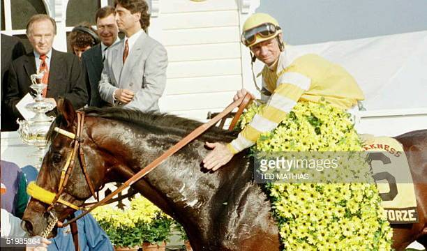 Jockey Pat Day pats Louis Quatorze after winning the 121st running of the Preakness Stakes at Pimlico Race Track in Baltimore 18 May The Preakness is...