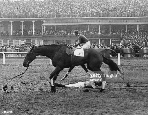 Jockey R Thrale lying on the racecourse after a fall from racehorse Ardoon's Pride during the Grand National at Aintree