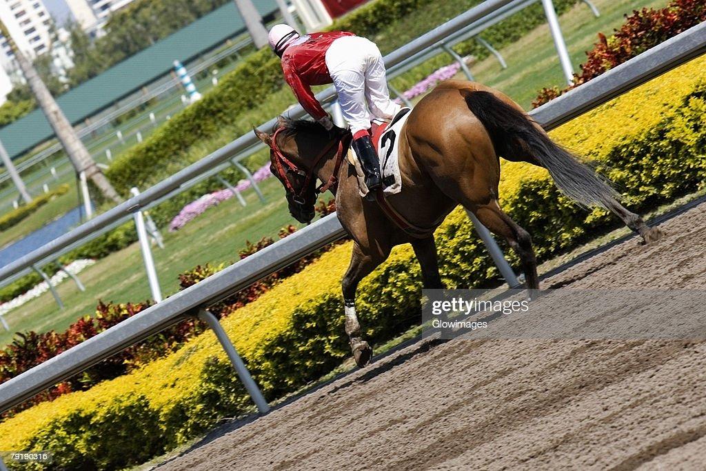 Jockey riding a horse in a horse race : Foto de stock