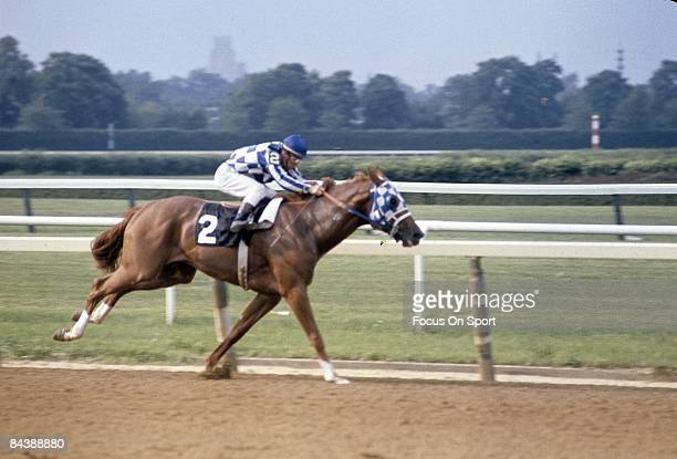 Jockey Ron Turcotte sits atop of Secretariat racing to win the Triple Crown at the Belmont Stakes June 9 at Belmont Park Elmont NY