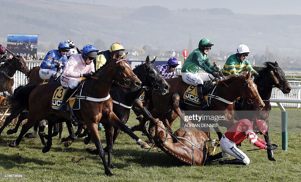 Jockey Ruby Walsh (R) falls from Abbyssial after jumping the first hurdle during the The JCB Triumph Hurdle race on the final day of the Cheltenham Festival horse racing meeting at Cheltenham Racecourse in Gloucestershire, South West England, on March 14, 2014. Leading Irish jockey Ruby Walsh's Cheltenham Festival campaign suffered a premature end when he was taken to hospital with a suspected broken arm after falling in The Triumph Hurdle.