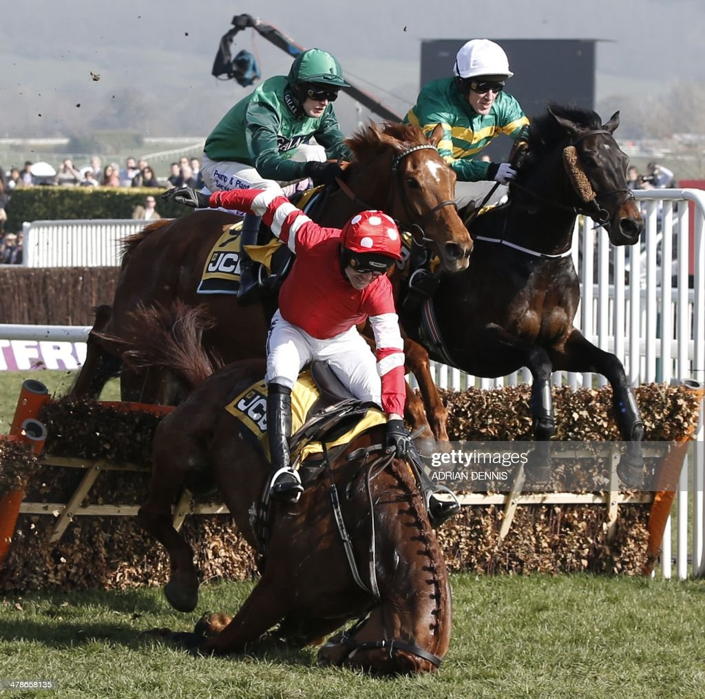 Jockey Ruby Walsh riding Abbyssial (L) falls at a hurdle during the JCB Triumph Hurdle race on the final day of the Cheltenham Festival horse racing meeting at Cheltenham Racecourse in Gloucestershire, South West England, on March 14, 2014.