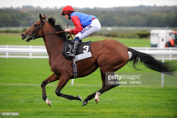 Jockey Ryan Moore on Lady Artemisia goes to post for the Princess Royal Transformers and Rectifiers EBF Stakes