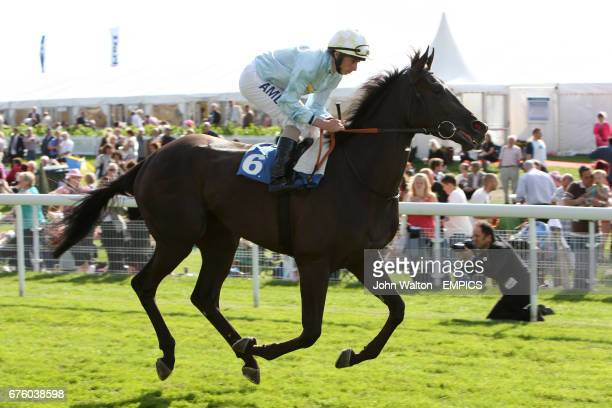 Jockey Ryan Moore on Leocorno goes to post for the EBF Galtres Stakes