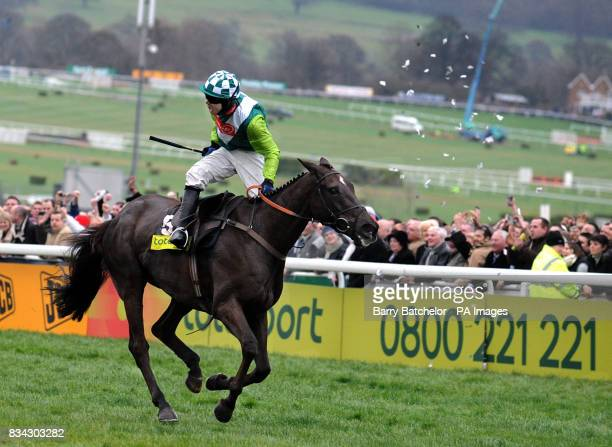 Jockey Sam Thomas on Denman rides on to win the 2008 Cheltenham Gold Cup while one unhappy punter's shredded ticket is thrown into the air