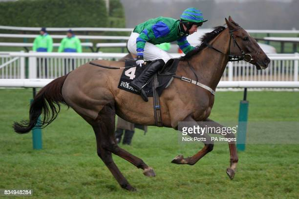Jockey Sean Magee rides High Bird Humphrey during the Independent Newspaper Novermber Novices' Chase at The Open at Cheltenham Racecourse