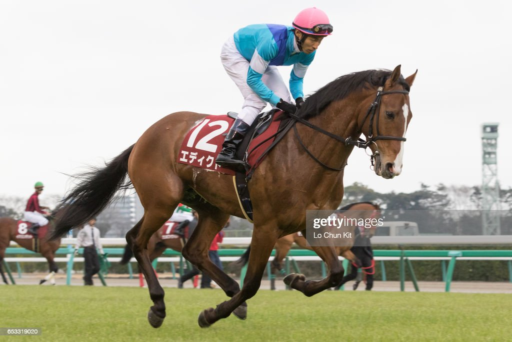 Jockey Takuya Ono riding Edict during the Race 11 Yayoi Sho - Japanese 2000 Guineas Trial (G2 2000m) at Nakayama Racecourse on March 6, 2016 in Funabashi, Chiba, Japan.