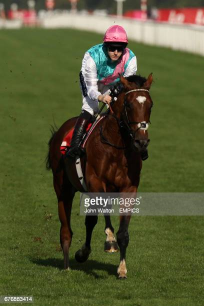 Jockey Tom Queally on Frankel after the Frank Whittle Partnership Conditions Stakes
