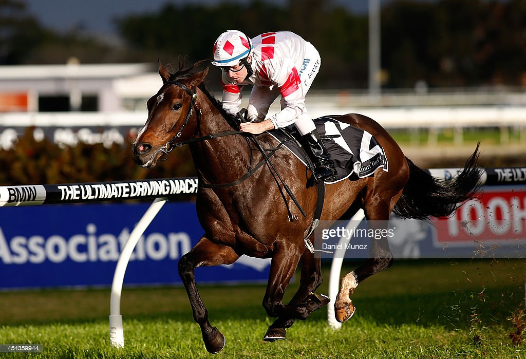 Jockey <a gi-track='captionPersonalityLinkClicked' href=/galleries/search?phrase=Tommy+Berry&family=editorial&specificpeople=8561993 ng-click='$event.stopPropagation()'>Tommy Berry</a> rides Greatwood to win Race 7 'Premier's Cup' during Sydney Racing at Rosehill Gardens on August 30, 2014 in Sydney, Australia.