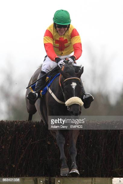 Jockey Tony McCoy on Black Beauty jumps the last in the Andy Don Memorial Novices' Chase