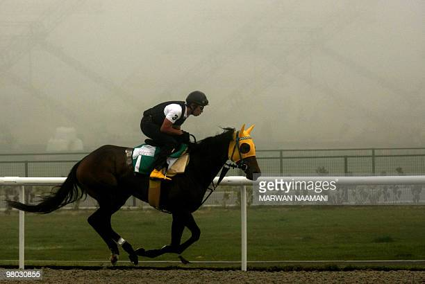 A jockey trains Japan's Buena Vista amid heavy fog on March 25 2010 at the Meydan race track ahead of the March 27 Dubai World Cup the world's...