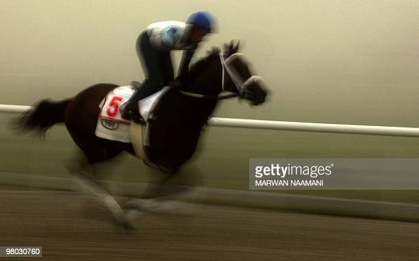 A jockey trains US horse Furthest Land amid heavy fog on March 25 2010 at the Meydan race track ahead of the March 27 Dubai World Cup the world's...