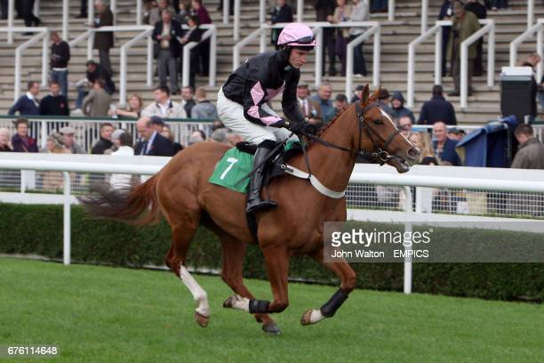 Jockey Wharfe on Never Sold Out during the Freebetscouk Free Sports Betting Novices' Selling Hurdle