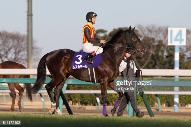 Jockey Yuta Nakatani riding Mousquetaire during the 61st Arima Kinen The Grand Prix at Nakayama Racecourse on December 25 2016 in Funabashi Chiba...