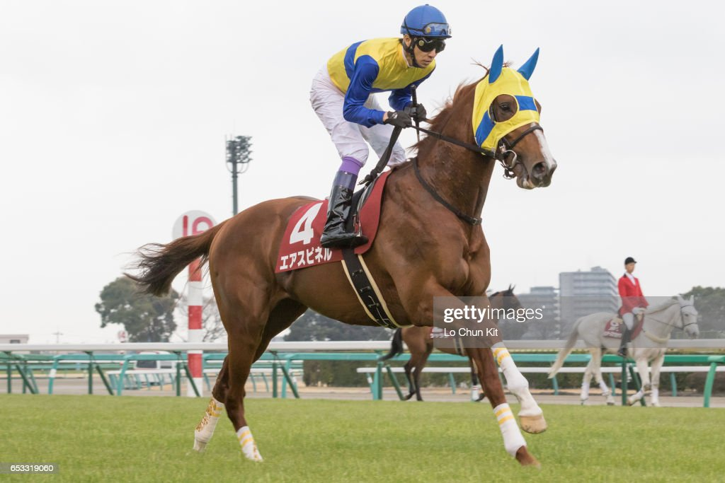 Jockey Yutaka Take riding Air Spinel during the Race 11 Yayoi Sho - Japanese 2000 Guineas Trial (G2 2000m) at Nakayama Racecourse on March 6, 2016 in Funabashi, Chiba, Japan.