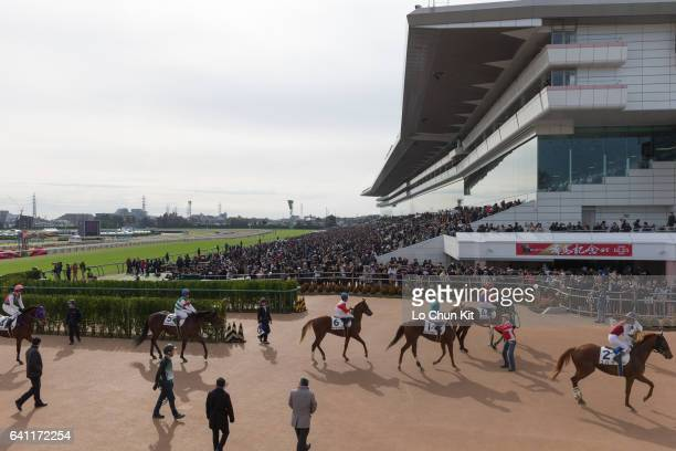 Jockeys and horses finished the Race 4 at Nakayama Racecourse There were over 98000 racing fans at Nakayama during the 61st Arima Kinen The Grand...